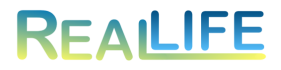 RealLife Connect Logo